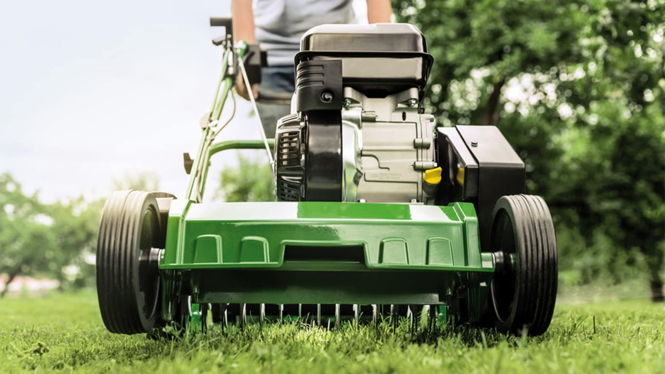 The best times to remove thatch are late spring and autumn. Our scarifiers are the effortless way to breathe fresh life into your lawn, making it thicker and healthier.