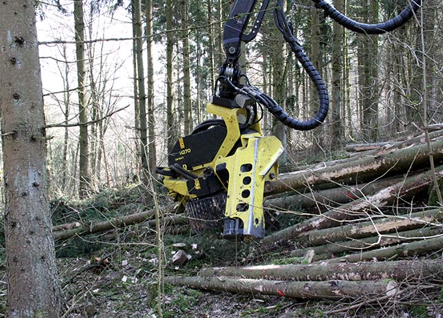 H270 Series II for crooked trees