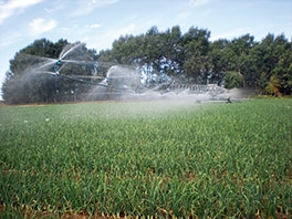 Farmers strive to preserve precious water sources?